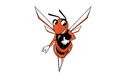 The Hornet is the Mascot for the Plattsburgh City School District and all the schools it services.